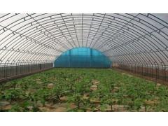 建设玻璃温室的考虑因素
