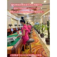 新百胜公司线上实体正规网投平台